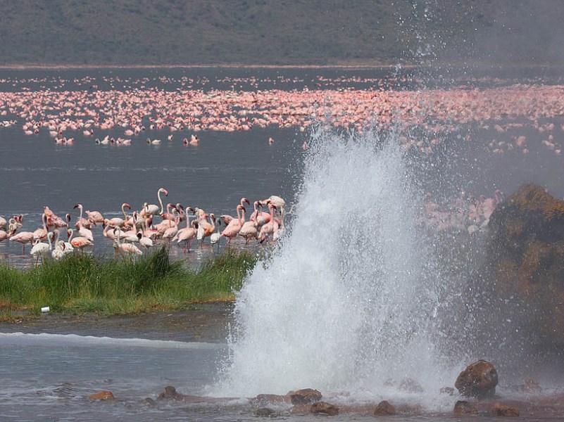 4 days Best of Kenya walking safari
