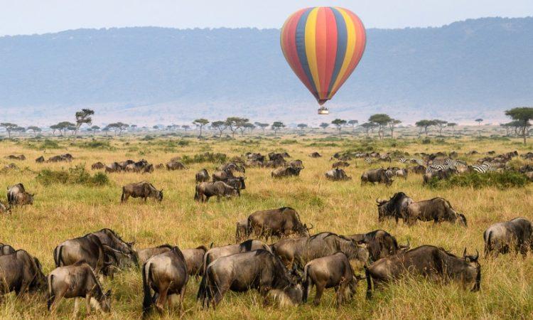 3 Days Masai Mara Balloon Safari