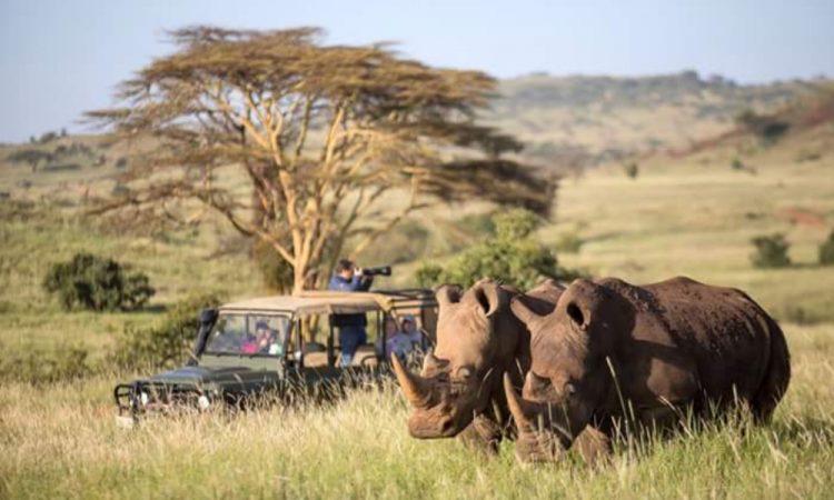 4 days Masai Mara luxury safari