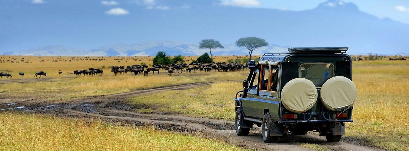 Accessing Lake Nakuru National Park