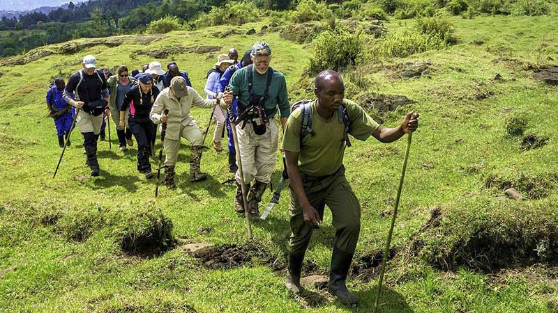 5 days Gorilla trekking Rwanda safari & Karisimbi Hike